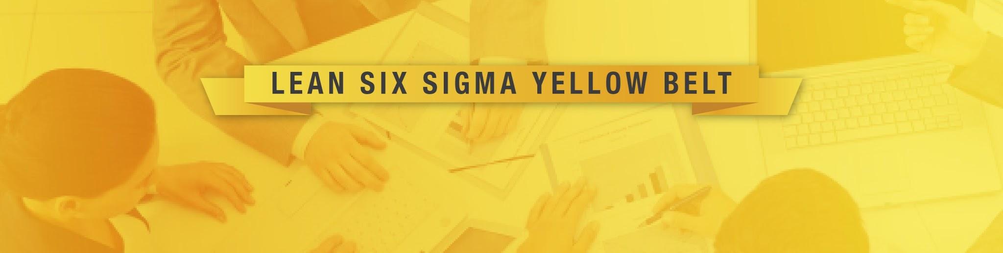 LSS Minnesota- Lean Six Sigma Yellow Belt